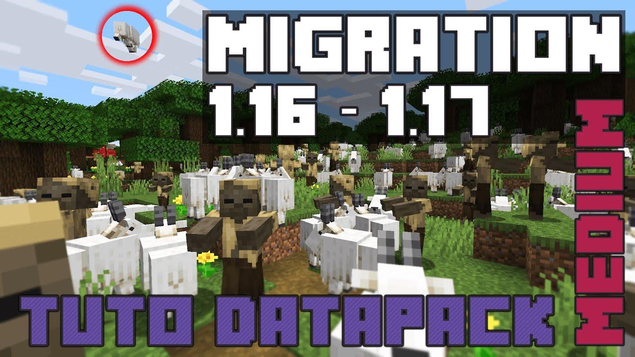 couverture de migration 1.16 1.17